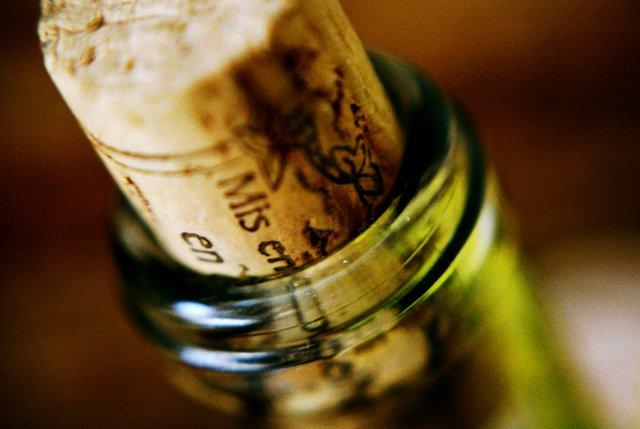 Lahev vína (4)