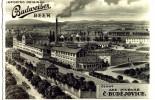 Budvar - historie (1)