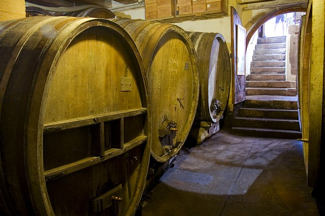 Sudy vína