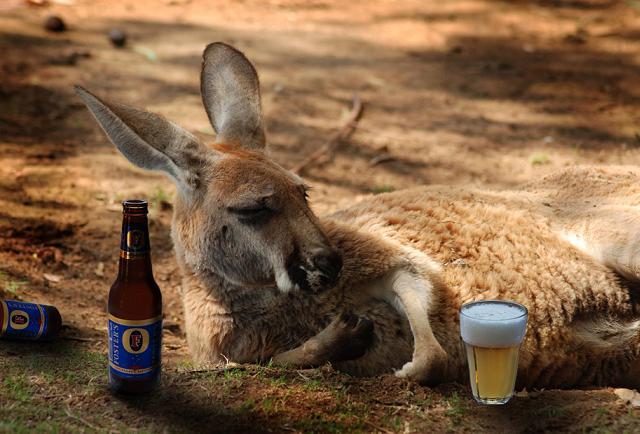 Australská pohoda