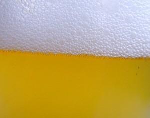 V Litovli poprvé uvařili pšeničné pivo #Pivo #Alkohol